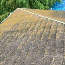 屋根のメンテナンスは必要?|岡崎市・西尾市の屋根リフォーム専門店カナルペイント